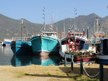 Färgrika fiskebåtar i Hout fjärdhamn Royaltyfri Bild