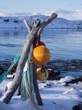 Färgrika fiskebobbers på Lofoten, Norge Arkivfoton