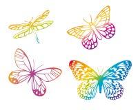 färgrika fjärilar Royaltyfri Fotografi