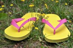 Färgrika flipper på gräs i closeup arkivbild