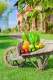 Färgrika frukter på brunt trä i naturligt ljus Fotografering för Bildbyråer