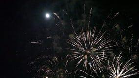 Färgrika fyrverkerier på en svart himmel stock video