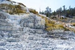 Färgrika geologiska bildande på terrasserna på Mammoth Hot Springs terrasserar, den Yellowstone nationalparken, Wyoming, USA Royaltyfria Foton