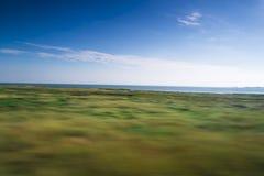 Färgrika gröna gras som leder till en Nordsjön, sätter på land Arkivbilder
