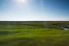 Färgrika gröna gras som leder till en Nordsjön, sätter på land Royaltyfria Bilder