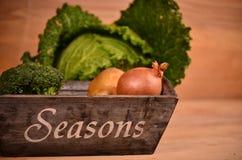 Färgrika grönsaker kål, blomkål, broccoli, potatis, lök på trätabellen Arkivfoton