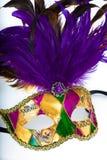 Färgrika gras för en mardi eller venetian maskering på en vit bakgrund Arkivfoton