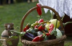 Färgrika höstgrönsaker i en korg royaltyfria bilder