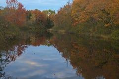 Färgrika höstsidor reflekterade i en Maine ström royaltyfri bild