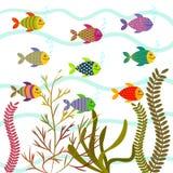Färgrika havsfiskar Undervattens- naturvektor royaltyfri illustrationer