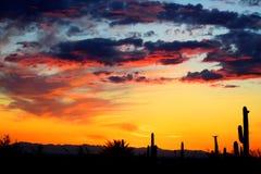Färgrika himlar på en afton i den Apache föreningspunkten och Mesa Area Royaltyfri Fotografi