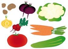 färgrika isolerade set grönsaker Arkivfoton