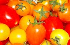 Färgrika körsbärsröda tomater royaltyfri foto