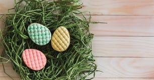 Färgrika kakor för easter ägg i rede på ljus träbakgrund royaltyfri foto
