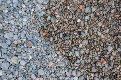 Färgrika kiselstenar på stranden Arkivfoto