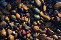 Färgrika kiselstenar på stranden i morgonsolskenet arkivbild