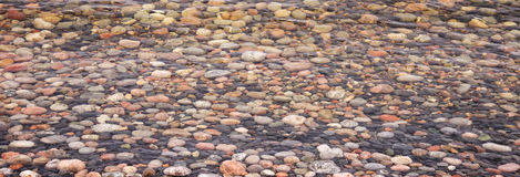 Färgrika kiselstenar under vatten Royaltyfri Fotografi