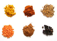 färgrika kryddor Fotografering för Bildbyråer