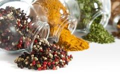 Färgrika kryddor Arkivbild