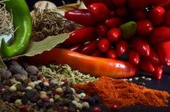 Färgrika kryddor Arkivfoto