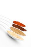 färgrika kryddor royaltyfri bild