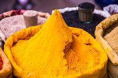 färgrika kryddor Royaltyfria Foton