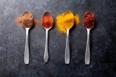 färgrika kryddor Royaltyfri Fotografi
