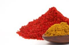 färgrika kryddor Royaltyfri Foto