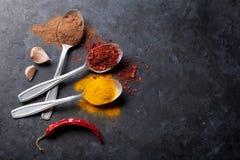 Färgrika kryddor i skedar Arkivfoton