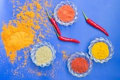 Färgrika kryddor och örter i glass disk på en blå bakgrund Royaltyfri Fotografi