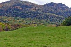 färgrika kullar Arkivfoto