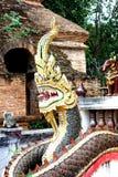 Färgrika läskiga Dragon Guards en buddistisk tempel Royaltyfri Fotografi