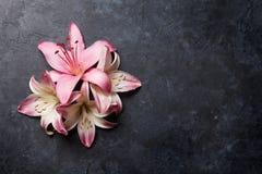 Färgrika liljablommor Arkivbilder