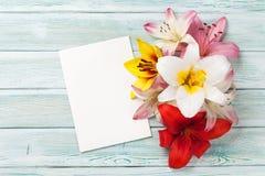 Färgrika liljablommor och hälsningkort Arkivfoto