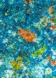 Färgrika målarfärgdroppar på golvet Arkivbild