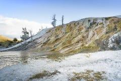 Färgrika Mammoth Hot Springs på den Yellowstone nationalparken med månen som visar upp i himlen Arkivbilder