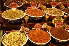 färgrika matlagningkryddor Royaltyfri Fotografi