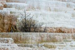 Färgrika mineraliska insättningar Royaltyfria Foton
