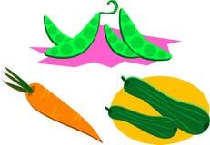 färgrika mixgrönsaker vektor illustrationer