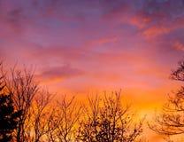 Färgrika moln Royaltyfri Fotografi