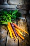 Färgrika morötter på lantlig träbakgrund Arkivfoton