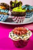 färgrika muffiner Arkivfoto