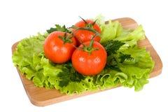 färgrika nya grönsaker Royaltyfria Foton