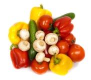färgrika nya isolerade grönsaker Royaltyfri Fotografi