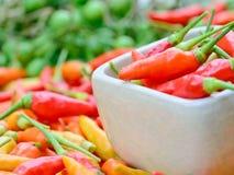 Färgrika nya peppar i den vita bunken Fotografering för Bildbyråer