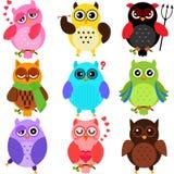 Färgrika Owls Royaltyfri Fotografi