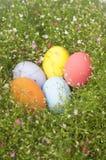Färgrika påskägg gränsar vid gruppen av blommabakgrund Royaltyfri Bild