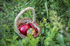 Färgrika påskägg i en bakgrund för korg och för grönt gräs Royaltyfri Foto