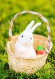 Färgrika påskägg i en korg med den gulliga vita leksakkaninen Royaltyfri Fotografi