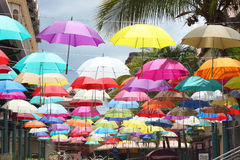 Färgrika paraplyer, Le Caudan Strand, Mauritius Royaltyfri Fotografi